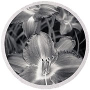 Day Lilies In Black And White Round Beach Towel by Adam Romanowicz