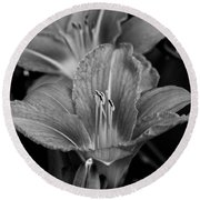 Day Lilies In Black And White Round Beach Towel