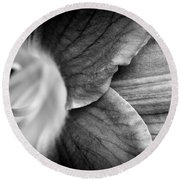 Day Lily Detail - Black And White Round Beach Towel