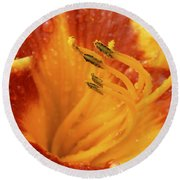 Day Lily In The Rain - 688 Round Beach Towel
