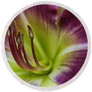 Day Lily Intimate Round Beach Towel