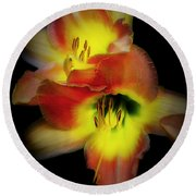Day Lily On Black Round Beach Towel