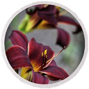 Daylilies Forever Round Beach Towel