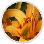 Daylillies0185 Round Beach Towel