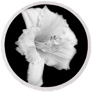 Daylily Flower Portrait Black And White Round Beach Towel