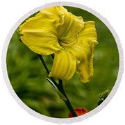 Daylily Picture 469 Round Beach Towel