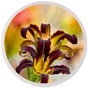 Daylily Picture 541 Round Beach Towel