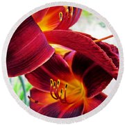 Daylily Twice Round Beach Towel
