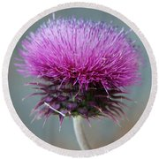 Dazzling Thistle Beauty Round Beach Towel