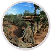 Dead Horse Point Tree 1 Round Beach Towel