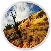 Dead Tree Against The Blue Sky Round Beach Towel by Jeff Swan