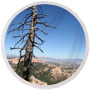 Dead Tree At Bryce Canyon  Overlook Round Beach Towel