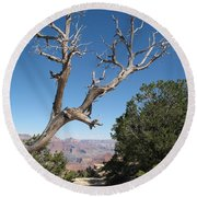 Dead Tree At Grand Canyon South Rim Round Beach Towel