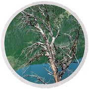 Dead Tree At Green River Lakes -wyoming Round Beach Towel