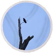 Dead Tree Crow Round Beach Towel