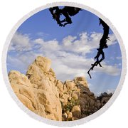 Dead Tree Limb Hanging Over Rocky Landscape In The Mojave Desert Round Beach Towel