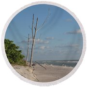 Dead Trees At The Seaside Round Beach Towel