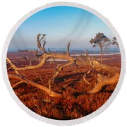 Dead Trees, Southern Uplands Round Beach Towel