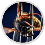 Dead Wasp On A Fork Round Beach Towel