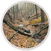 Deciduous Forest With Ravines Round Beach Towel