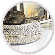 Deck Cat Round Beach Towel