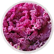 Decorative Fancy Pink Kale Round Beach Towel