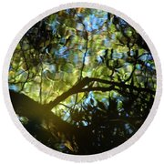 Deep Forest Light Round Beach Towel