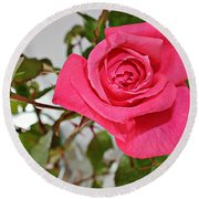 Deep Pink Rose - Summer - Rosebuds Round Beach Towel