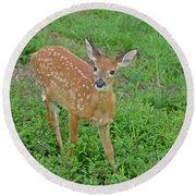 Deer 11 Round Beach Towel