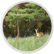 Deer At Dusk V1 Round Beach Towel