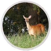 Deer At Dusk V3 Round Beach Towel
