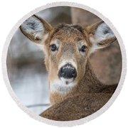 Deer Round Beach Towel
