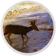 Deer Crossing Round Beach Towel