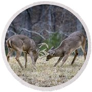 Deer Discussion E167 Round Beach Towel
