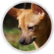 Deer-head Chihuahua Round Beach Towel