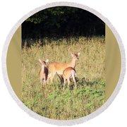 Deer-img-0642-001 Round Beach Towel