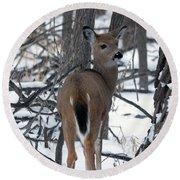 Deer In The Grove Round Beach Towel