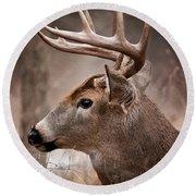Deer Pictures 491 Round Beach Towel