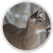 Deer Profile Round Beach Towel