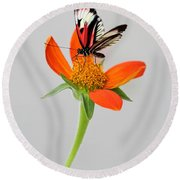 Delicate Beauty Round Beach Towel