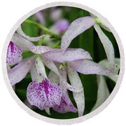 Delicate Orchid Blossoms Round Beach Towel