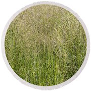 Delicate Tall Grasses Round Beach Towel