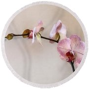 Delicate Pink Phalaenopsis Orchids Round Beach Towel