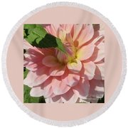 Delightful Smile Dahlia Flower Round Beach Towel