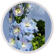 Delphinium With Cloud Round Beach Towel