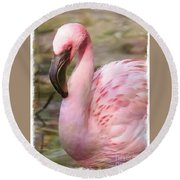 Demure Flamingo - Digital Art Round Beach Towel