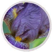 Demure Iris Round Beach Towel