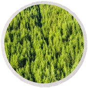Dense Forest Round Beach Towel