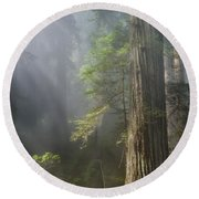 Depth Of Forest Round Beach Towel