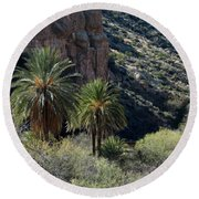 Desert Palms Round Beach Towel